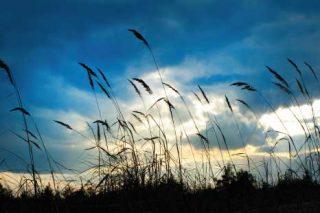 Il vento e la traspirazione degli ambienti