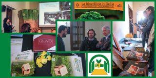 Seminario Castelbuono - Un passaggio per Biotopia